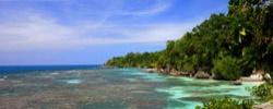 Климатические условия острова Ямайка